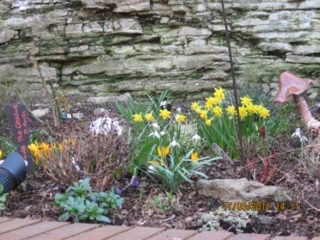 19 Upper Linney Garden